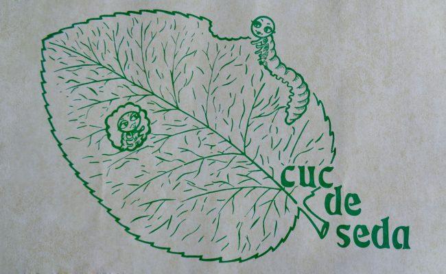 cuc-de-seda-masquefa-01