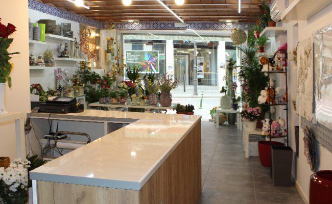 floristeria-torres-botiga-03